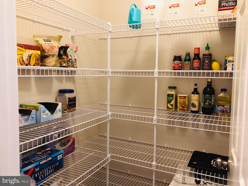 Large pantry - 17985 WOODS VIEW DR, DUMFRIES
