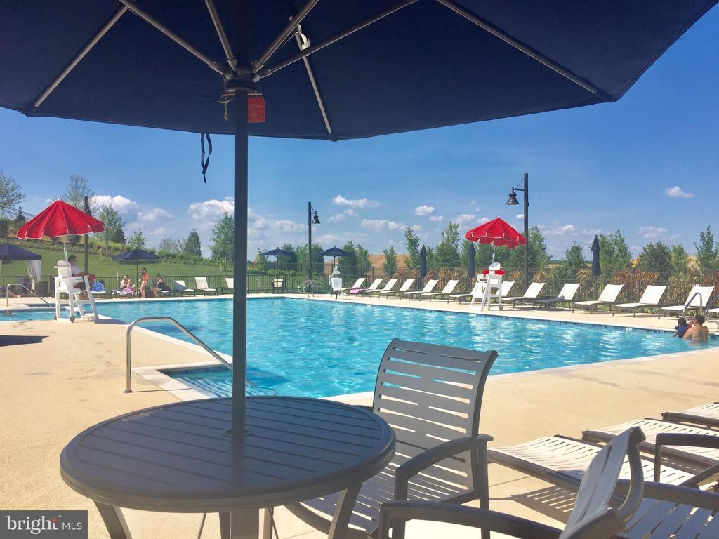 This is the  2nd pool with cabanas - 17985 WOODS VIEW DR, DUMFRIES