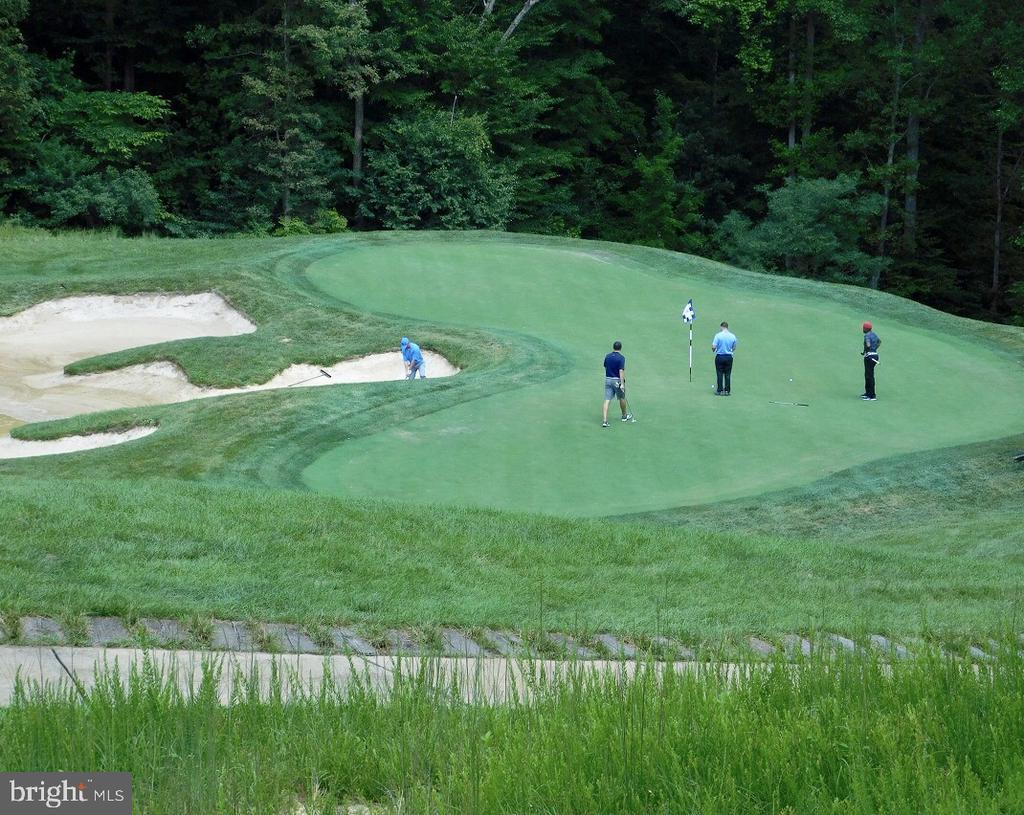 Jack Nicklaus Public Golf Course - 17985 WOODS VIEW DR, DUMFRIES