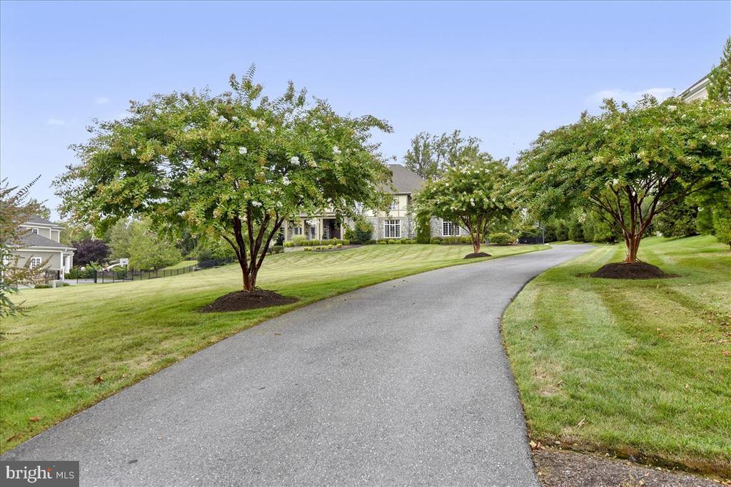 Lovely tree lined driveway to side garage - 12056 OPEN RUN RD, ELLICOTT CITY