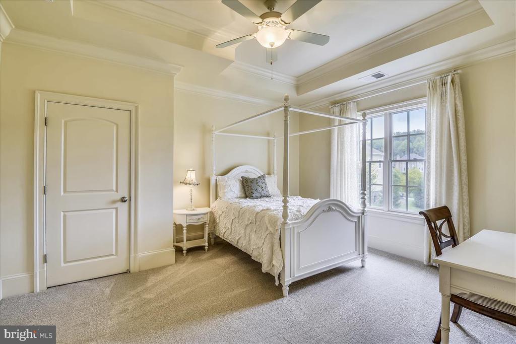 Beautiful serene bedroom - 12056 OPEN RUN RD, ELLICOTT CITY