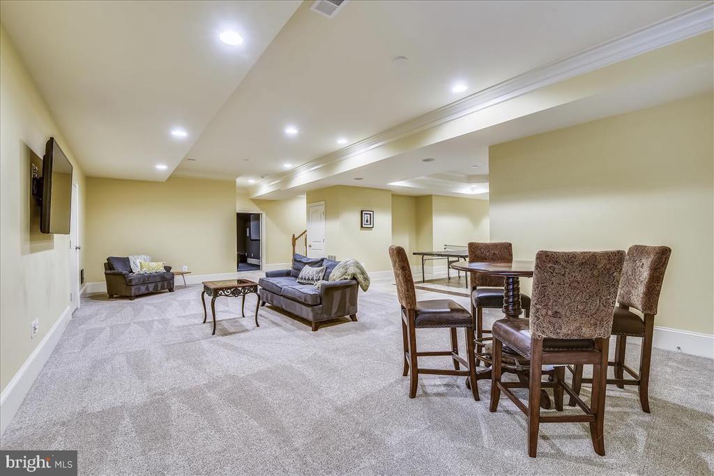 Lower Level Family Room - 12056 OPEN RUN RD, ELLICOTT CITY