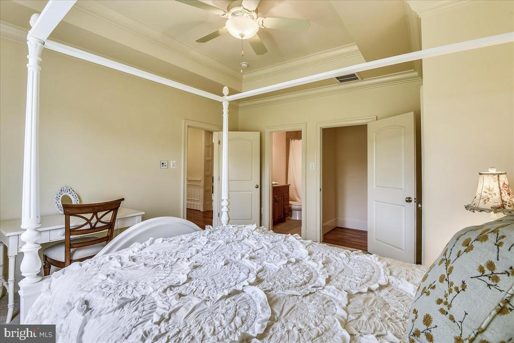 Tres ceiling in Second Bedroom - 12056 OPEN RUN RD, ELLICOTT CITY