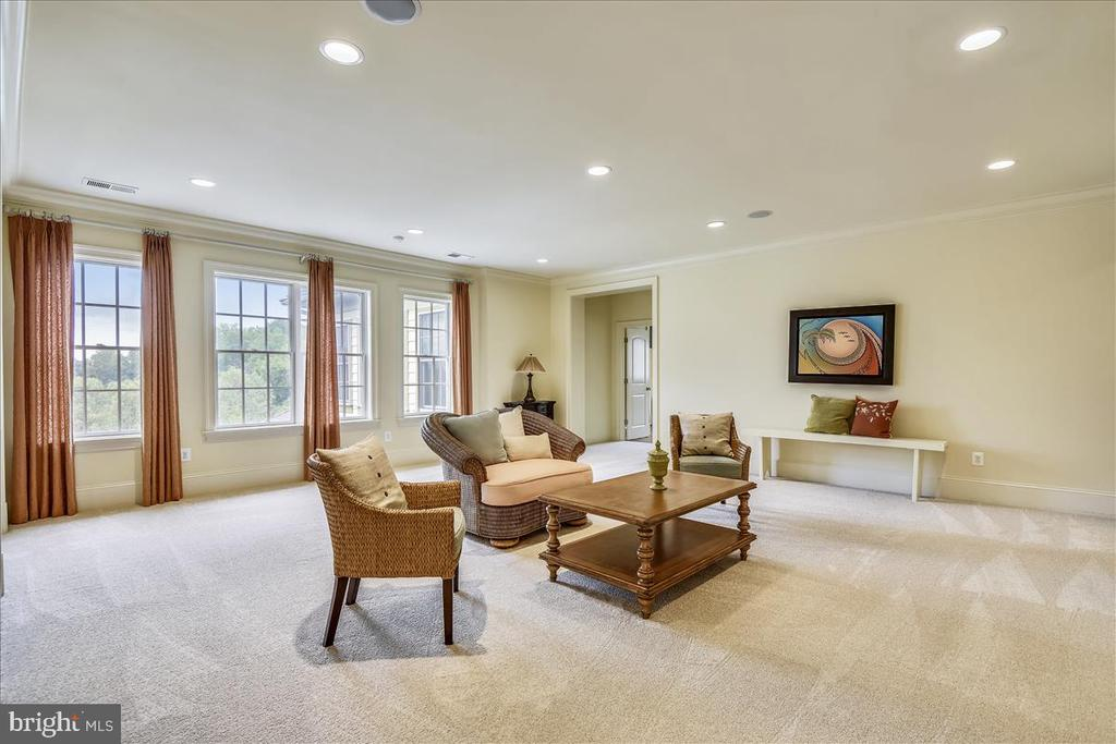 Private upstairs Family Room - 12056 OPEN RUN RD, ELLICOTT CITY