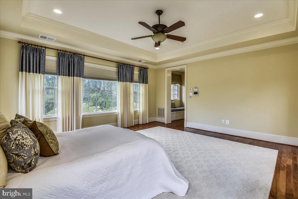 Lovely palate with tres ceiling - 12056 OPEN RUN RD, ELLICOTT CITY