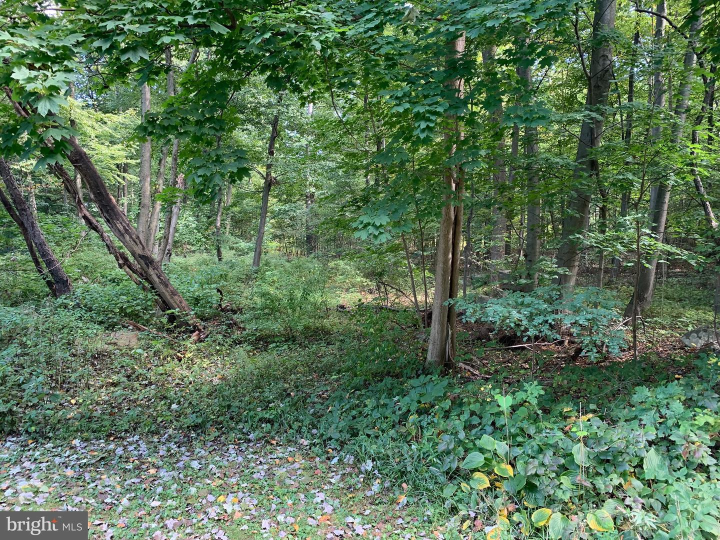 Land for Sale at Alburtis, Pennsylvania 18011 United States