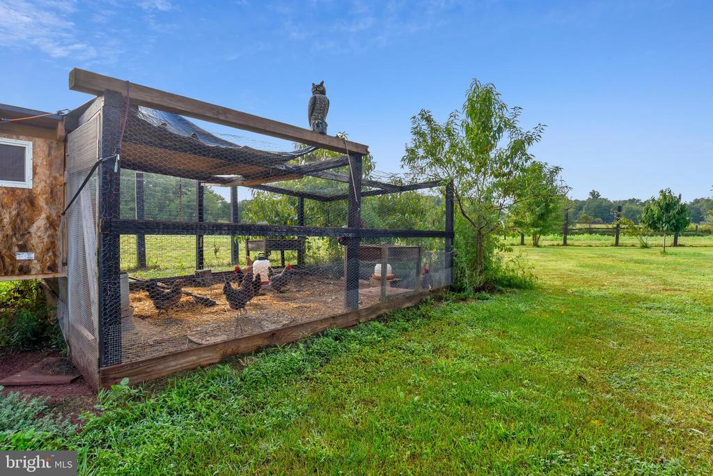 Chicken Coop - 19937 EVERGREEN MILLS RD, LEESBURG