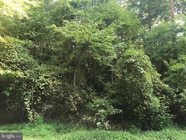 Property por un Venta en Adelphi, Maryland 20783 Estados Unidos