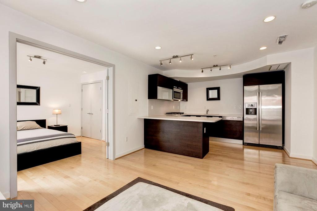 Top of the line finishes in kitchen... - 1466 HARVARD ST NW #2B, WASHINGTON