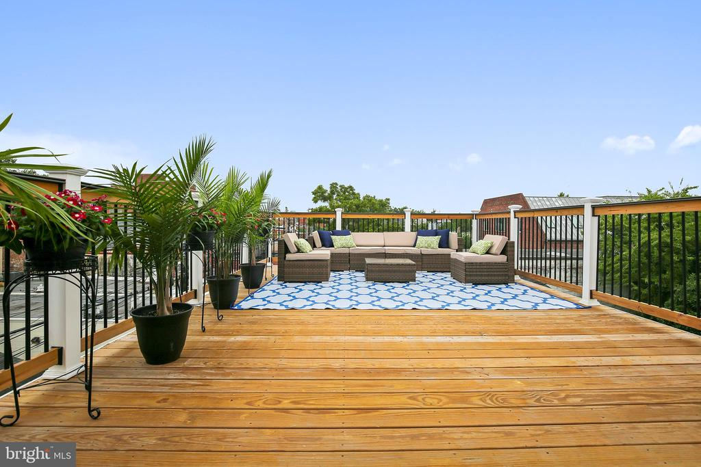 One of the most expansive roof top decks in town. - 108 N PAYNE ST, ALEXANDRIA
