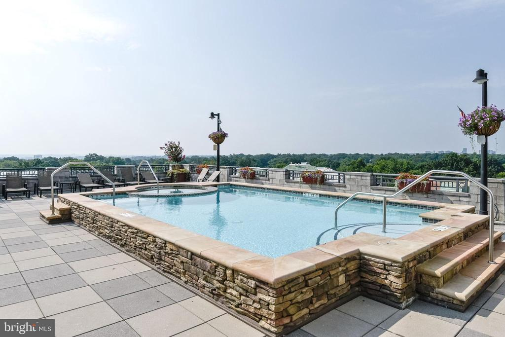Roof deck w/ pool & amazing views, all directions! - 1021 N GARFIELD ST #410, ARLINGTON
