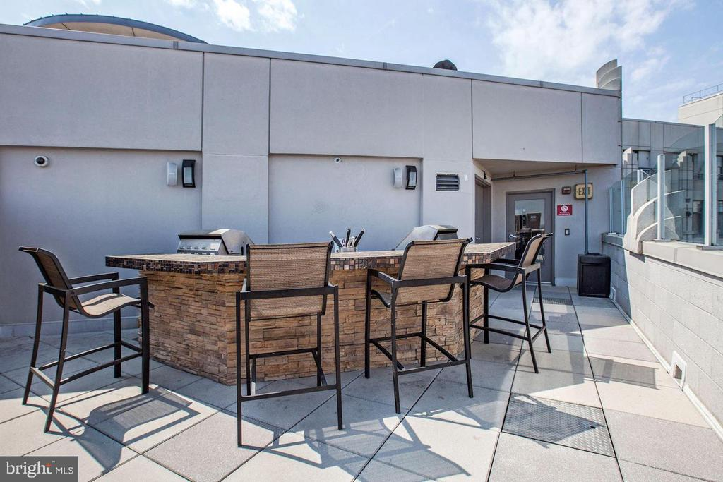 Entertain in style on your roof deck in the sky! - 1021 N GARFIELD ST #410, ARLINGTON