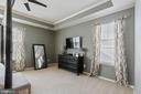 Plenty of room in this master bedroom - 23337 MORNING WALK DR, BRAMBLETON