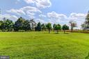 Lovely grounds mature trees and fruit trees - 7508 BELMONT RD, SPOTSYLVANIA