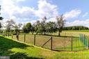 Int'l specs tennis court (could be future pool) - 7508 BELMONT RD, SPOTSYLVANIA