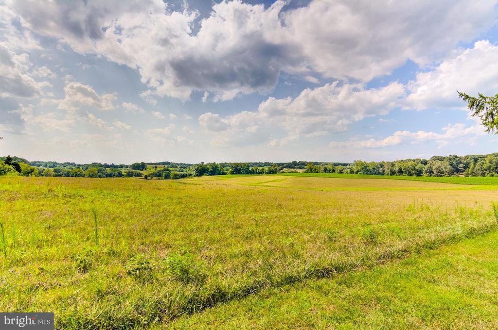 Lovely surrounding pasture views - 7508 BELMONT RD, SPOTSYLVANIA