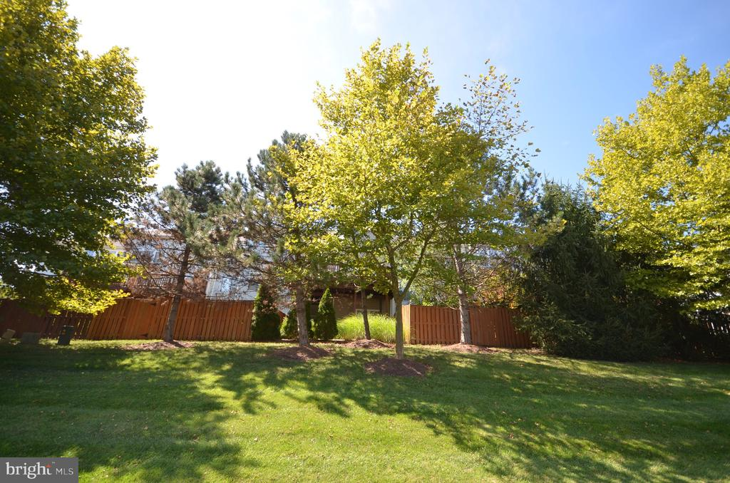 Lots of back yard privacy due to mature trees - 45794 MOUNTAIN PINE SQ, STERLING