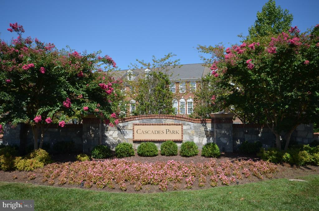 Enjoy the amenity rich community of Cascades Park! - 45794 MOUNTAIN PINE SQ, STERLING