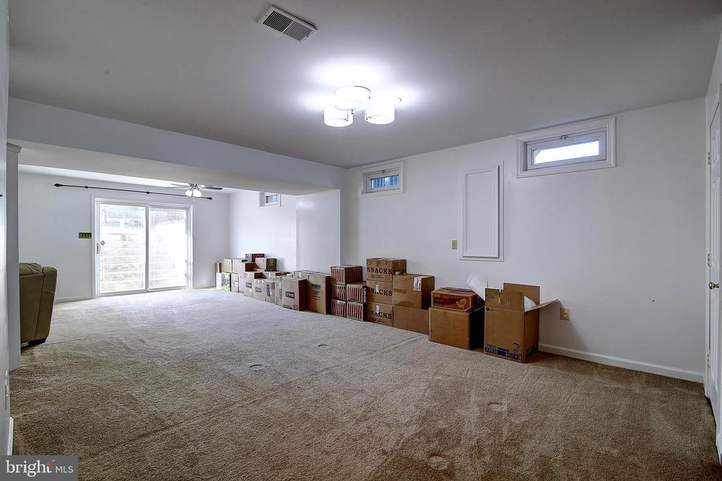 Red Room Basement - 44247 OLDETOWNE PL, ASHBURN