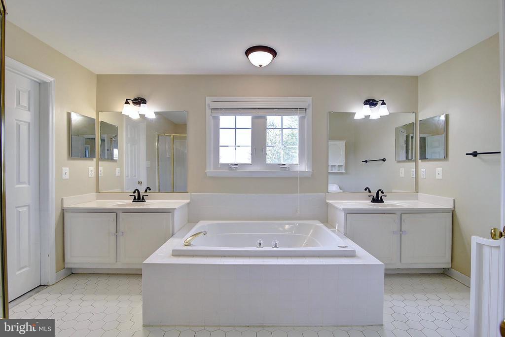 Master Bath - 44247 OLDETOWNE PL, ASHBURN