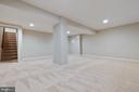 Finished lower level recreation room - 11715 BLUE SMOKE TRL, RESTON