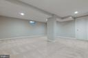 Perfect for movies, video games or pool - 11715 BLUE SMOKE TRL, RESTON