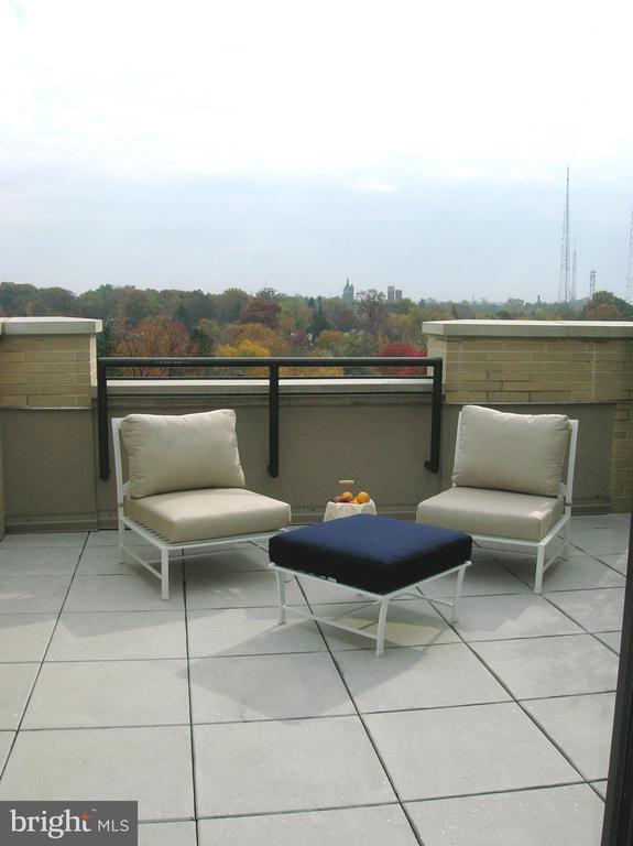 Large outdoor Terrace - 4301 MILITARY RD NW #PH5, WASHINGTON