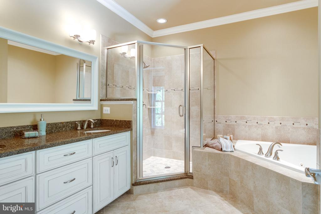 Spa-style Bath with Jetted Tub - 2479 OAKTON HILLS DR, OAKTON