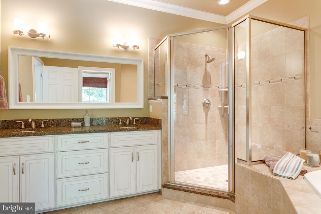 Spacious & Elegant Bath in Au Pair Suite - 2479 OAKTON HILLS DR, OAKTON