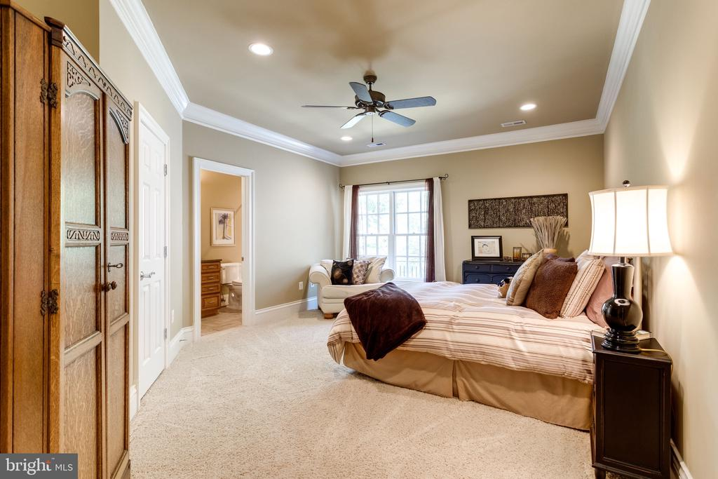 Another Generous Bedroom w Private Bath & W/I - 2479 OAKTON HILLS DR, OAKTON