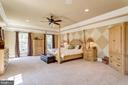 Enormous Owner's Retreat - 2479 OAKTON HILLS DR, OAKTON