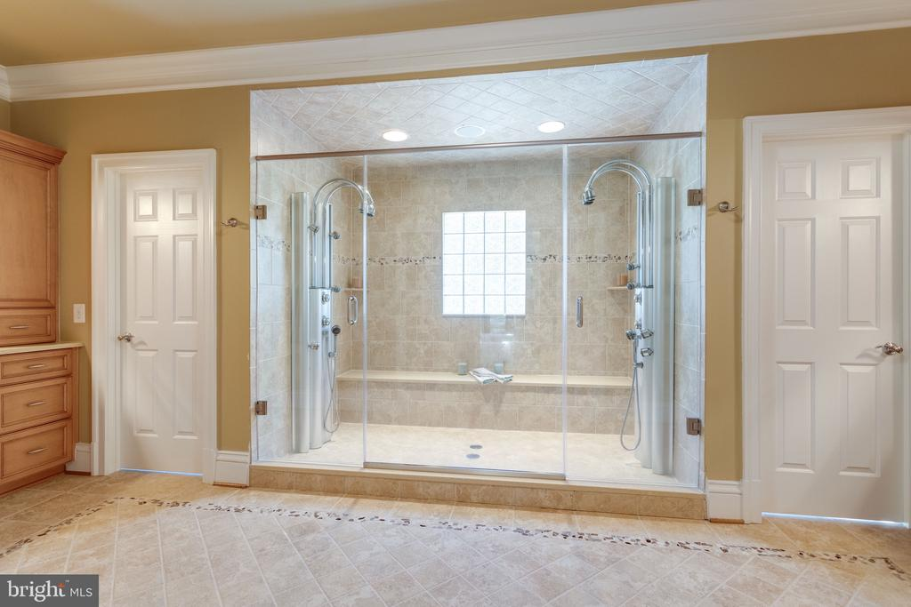 Seamless Walk-in Shower w 2 Entry Doors - 2479 OAKTON HILLS DR, OAKTON