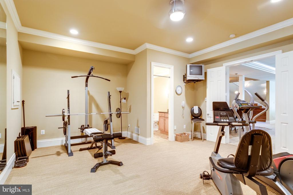No need to go to the Gym! - 2479 OAKTON HILLS DR, OAKTON