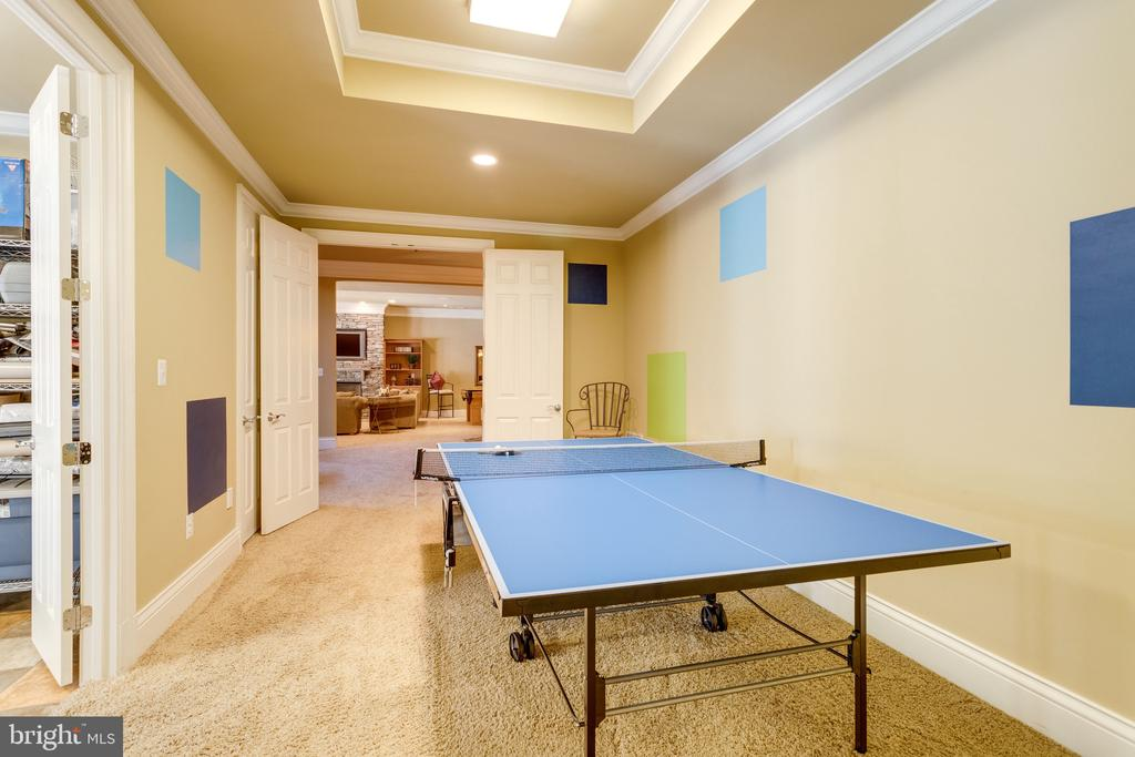 Game Room - 2479 OAKTON HILLS DR, OAKTON