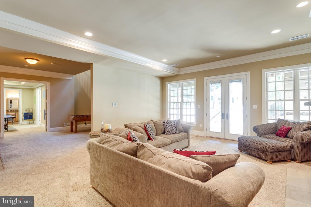 Light-filled Lower Level - 2479 OAKTON HILLS DR, OAKTON