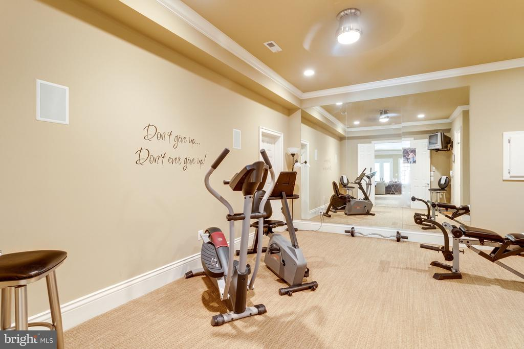 Exercise Room with adjacent Powder Room - 2479 OAKTON HILLS DR, OAKTON