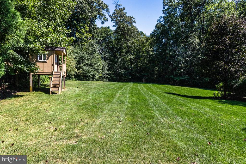 Fenced Backyard with Playhouse - 2479 OAKTON HILLS DR, OAKTON