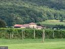 Breaux Vineyard and  17 Others within 5 Miles - 13452 HARPERS FERRY RD, HILLSBORO