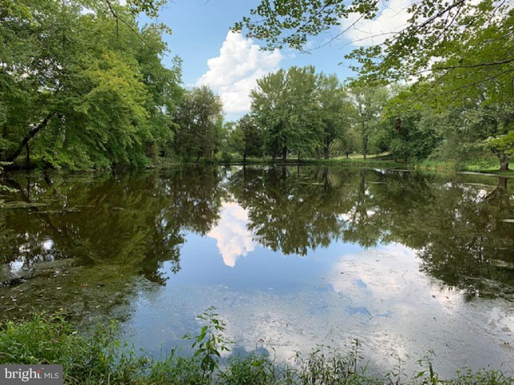 Peaceful & Mesmerizing Pond Reflections - 13452 HARPERS FERRY RD, HILLSBORO