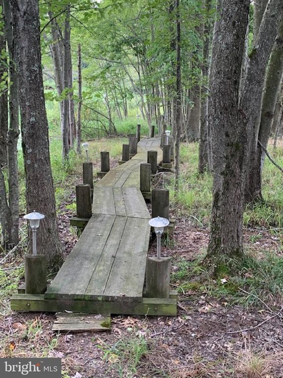 Wooden Trail  Around the Pond - 13452 HARPERS FERRY RD, HILLSBORO