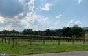 In the Middle of Virginia Wine Country - 13452 HARPERS FERRY RD, HILLSBORO