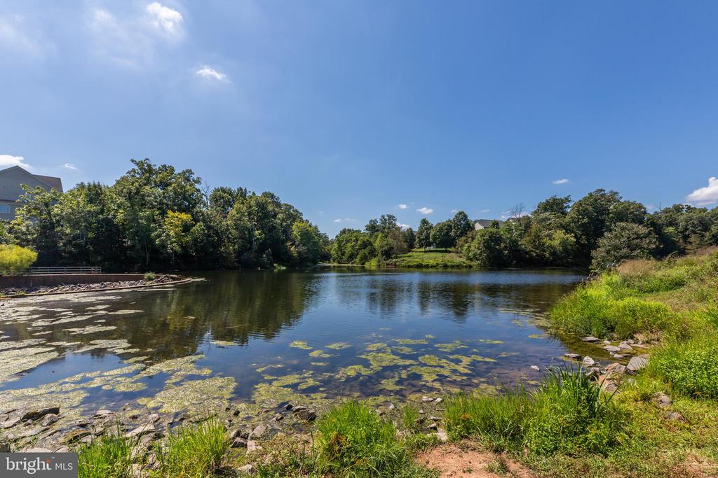 Lake - 43046 WATERS OVERLOOK CT, LEESBURG