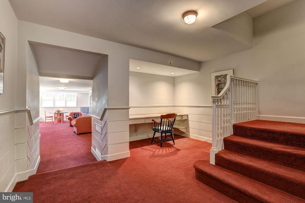 Lower Level - 6405 SHADOW RD, CHEVY CHASE