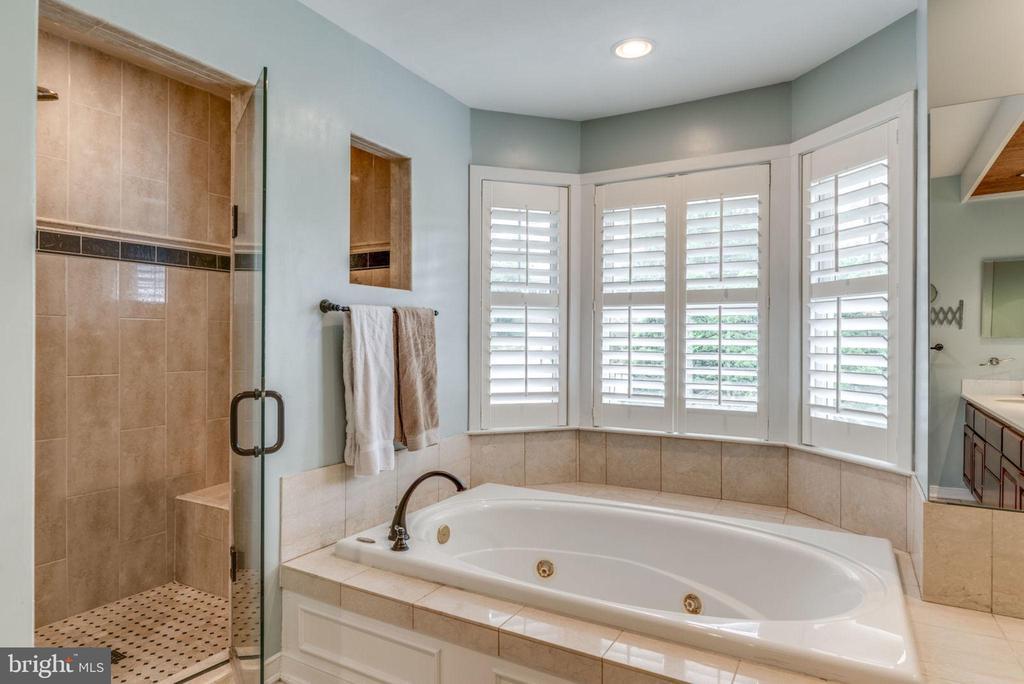 Master bath w soaking tub and shower - 20456 TAPPAHANNOCK PL, STERLING
