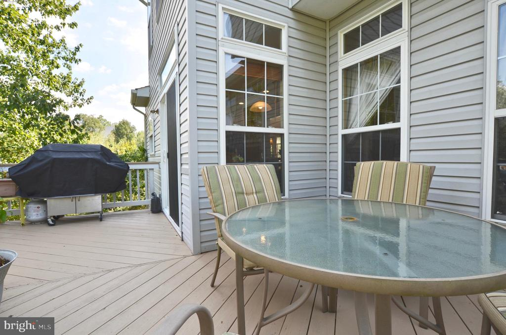 Perfect outside entertaining space - 43228 CAVELL CT, LEESBURG