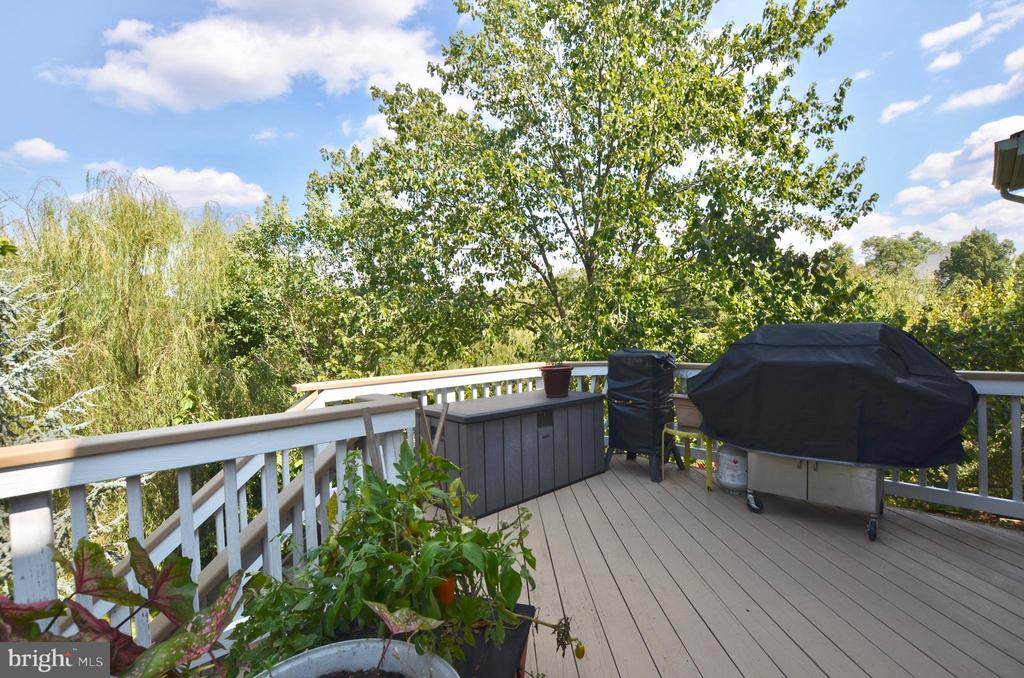 Huge private deck - 43228 CAVELL CT, LEESBURG