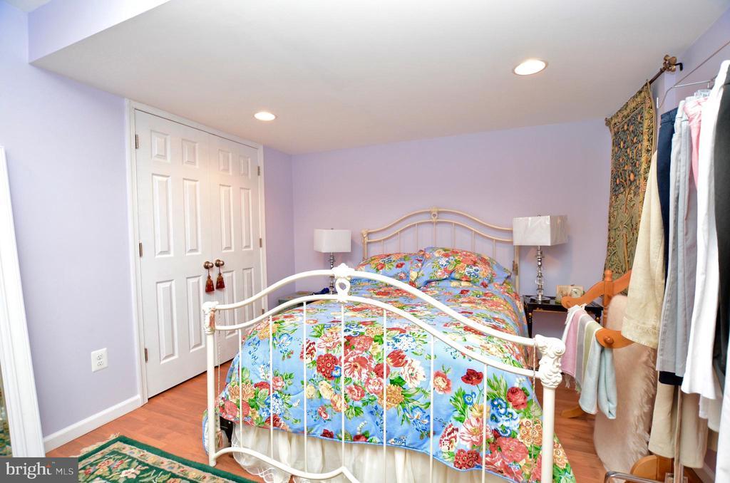 Bonus room with 2 closets - 43228 CAVELL CT, LEESBURG