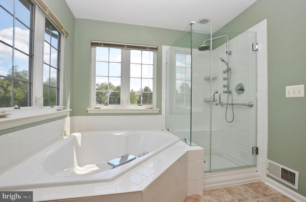 Spa master bath with soaking tub - 43228 CAVELL CT, LEESBURG