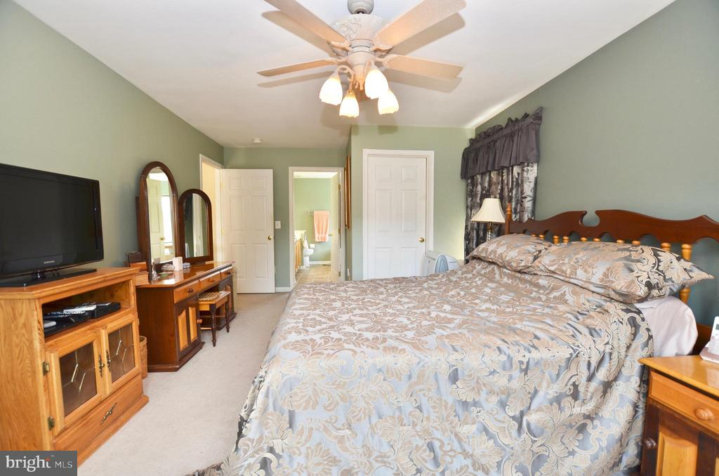 Master bedroom with walk in closet - 43228 CAVELL CT, LEESBURG