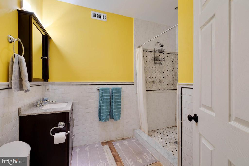 Basement Full Bath - 14111 PUNCH ST, SILVER SPRING